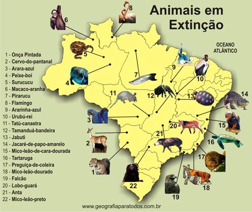 animais_em_extincao