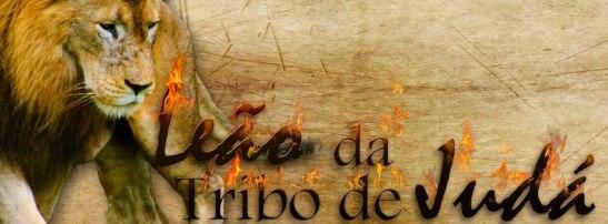 leao da tribo