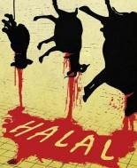 halal-slaughter-480
